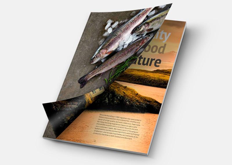 Agustson Brochure
