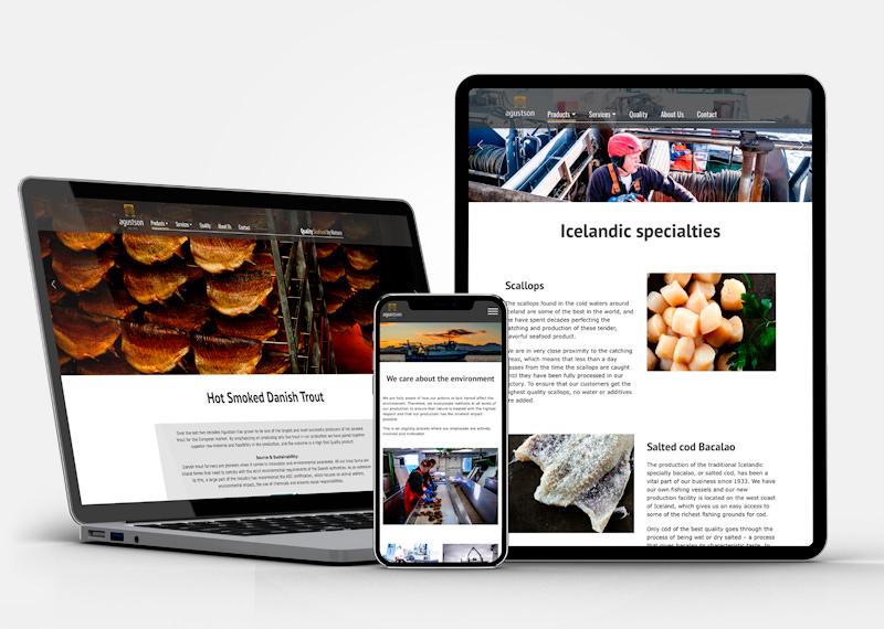 Agustson Website